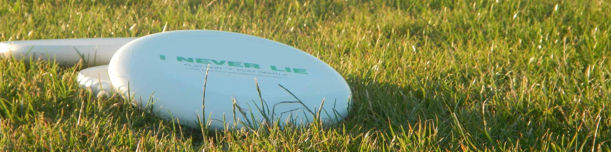 Ultimate vacances Nantes Frisbee 2015